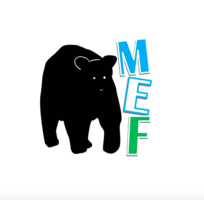 MEF Grant Applications!